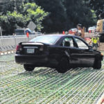 Driver goes through barrier on SR 95
