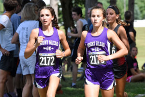 Gallery: Galion Cross Country Festival: Photos by Don Tudor
